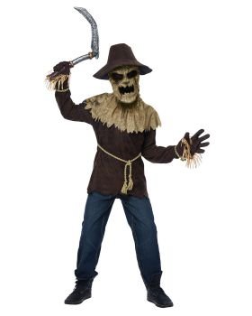 California Costumes 00284A Wicked Scarecrow Child Costume
