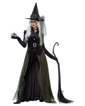 California Costumes 01428 Adult Gothic Witch Costume