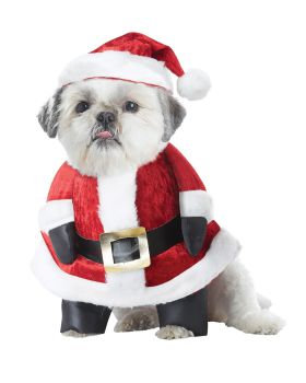California Costumes PET20131 Santa Paws Dog Costume