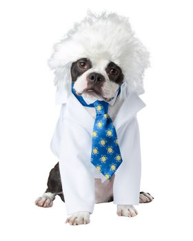 California Costumes PET20150 Al-Bark Einstein Dog Costume