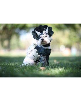 California Costumes PET20159 Dino Pup Dog Costume