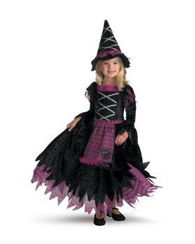 Disguise DG3216L Fairy Tale Witch 4 To 6 Child