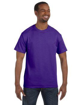 Hanes 5250T Men's Authentic-T T-Shirt