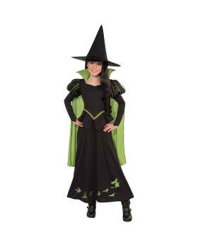 Rubies RU886489LG Wizard Oz Wicked Witch Child L