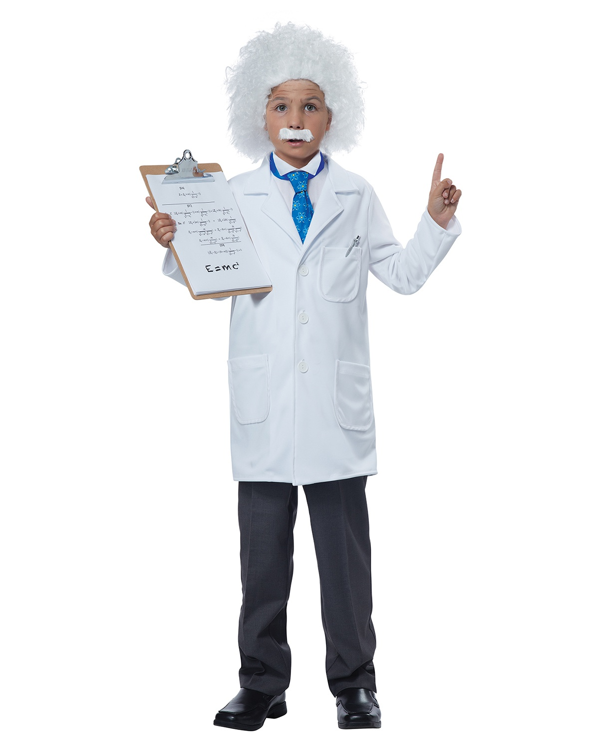 'California Costumes 00297 Albert Einstein Physicist Costume'